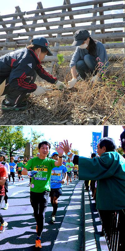 東日本大震災復興「海岸林再生プロジェクト」に参画